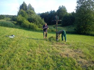 2-krzyz-na-cmentarzu-cholerycznym-na-wygonie-fot-pawel-fekner